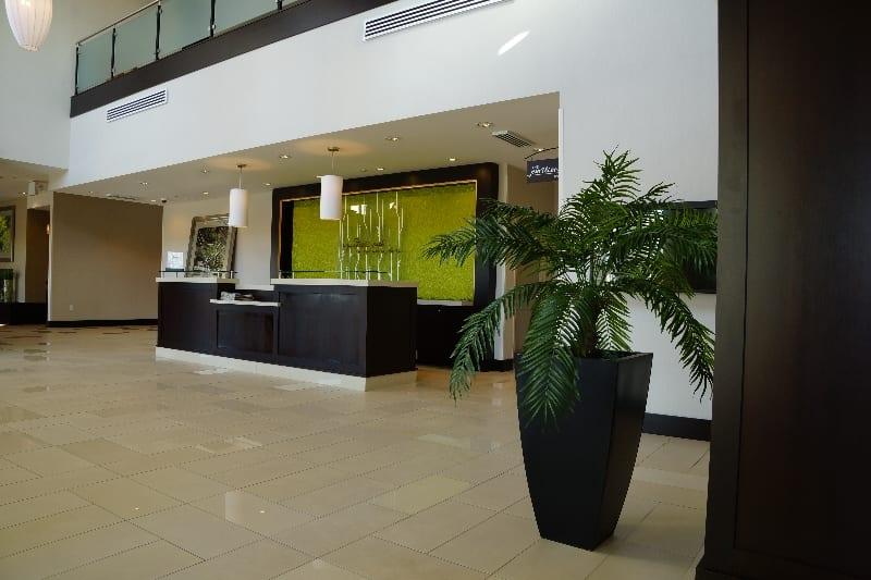 Hilton Garden 12 26 2012 6